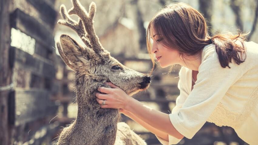 Pourquoi il ne faut pas caresser les animaux dans les zoos