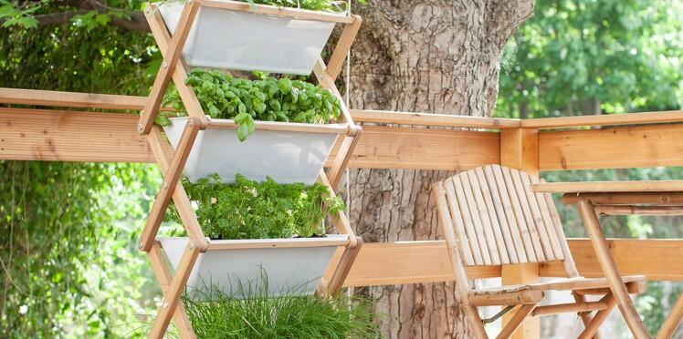 Jardin : le b.a.-ba du potager vertical