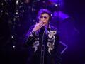 Mort de Dick Rivers, le chanteur a succombé à un cancer le jour de son anniversaire