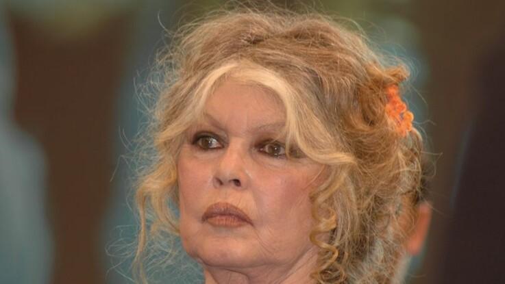 Brigitte Bardot : cette raison improbable pour laquelle elle ne chante plus