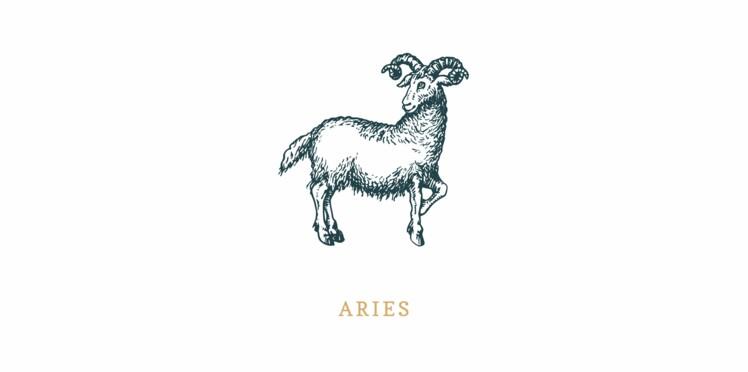 Signe astrologique du Bélier : vos compatibilités avec les quatre éléments