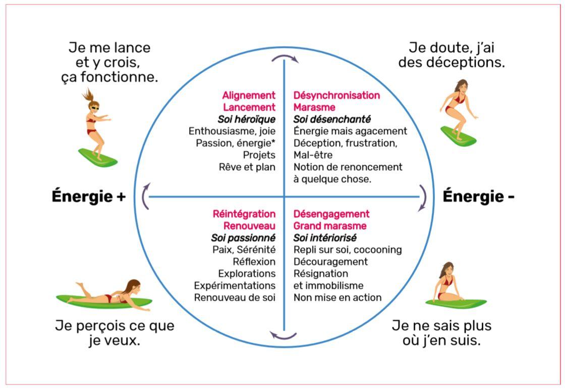 cycle de la femme