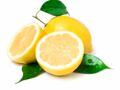 Les 5 atouts du citron pour la santé des seniors