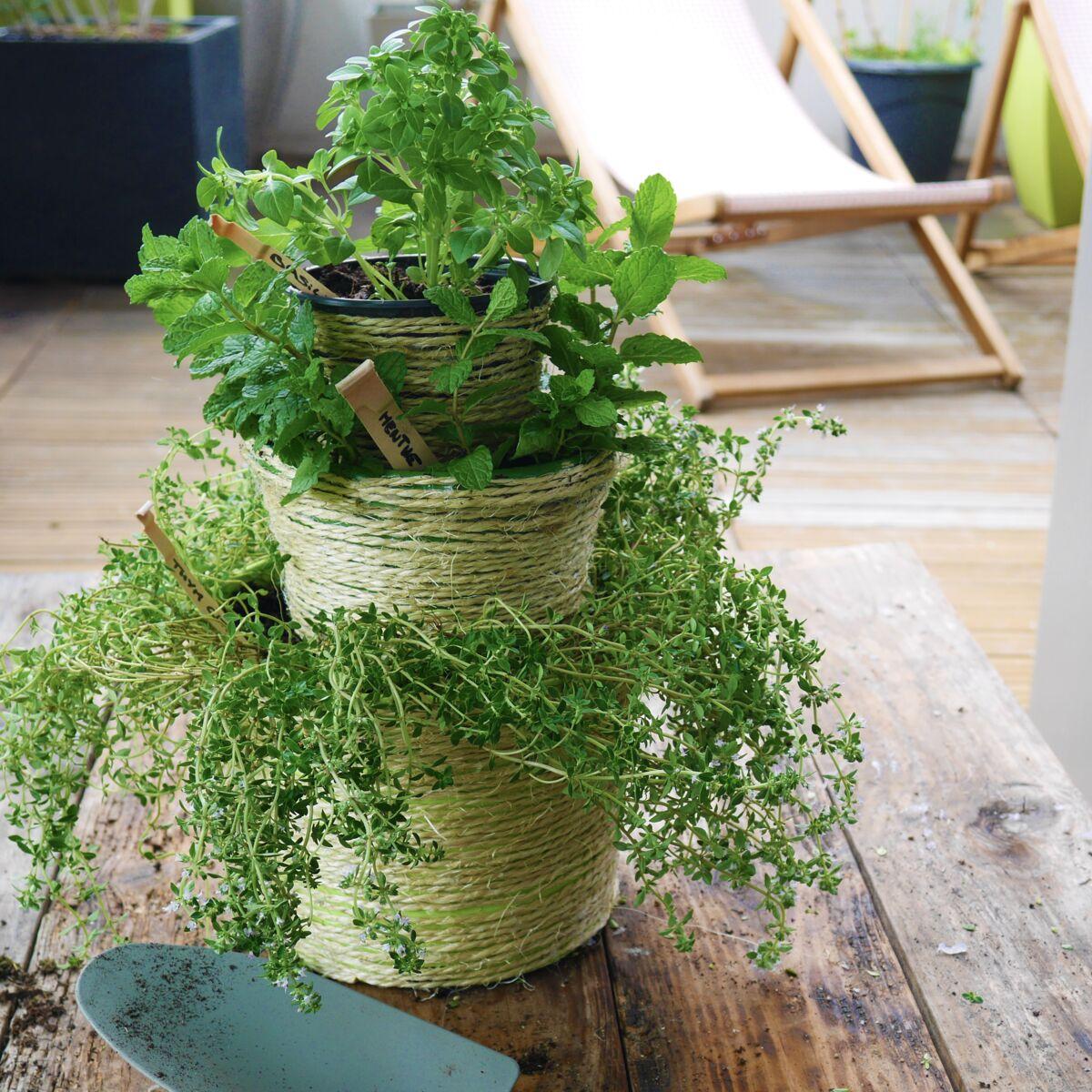 Planter Herbes Aromatiques Jardiniere tuto : réalisez une jardinière originale pour vos plantes