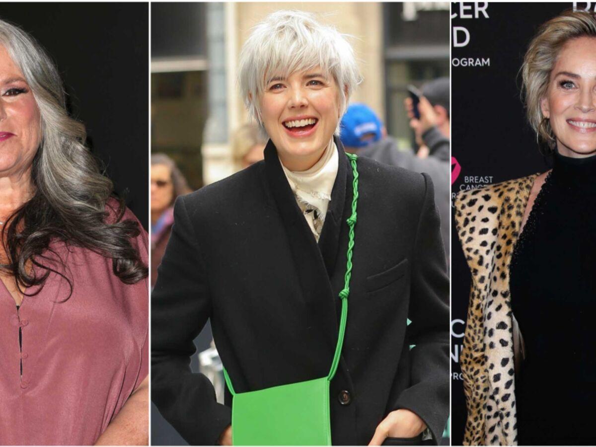 20 Coupes Pour Cheveux Gris Qui Donnent Du Style Femme Actuelle Le Mag
