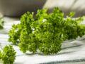 Comment conserver et congeler du persil ?