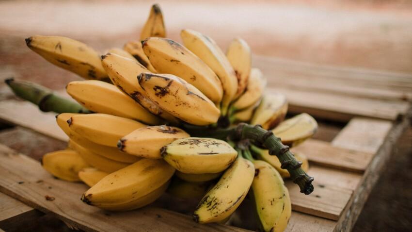 Pourquoi les bananes pourraient disparaître ?