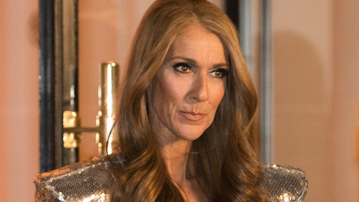 Céline Dion enflamme la Toile en dévoilant son superbe