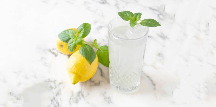 Gin citron et basilic
