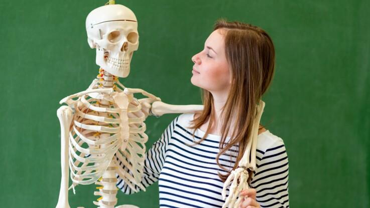 5 infos étonnantes sur notre squelette