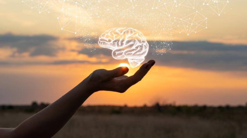 5 infos étonnantes sur notre cerveau