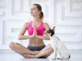 Bien-être : 2 exercices à faire avec mon chien pour se détendre après une longue journée