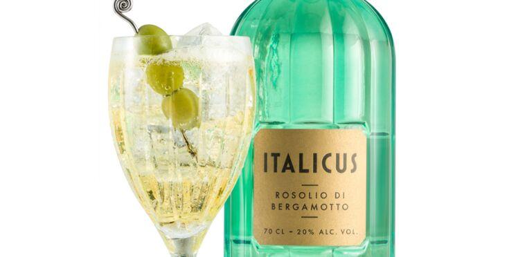 Cocktail Le Spritzicus