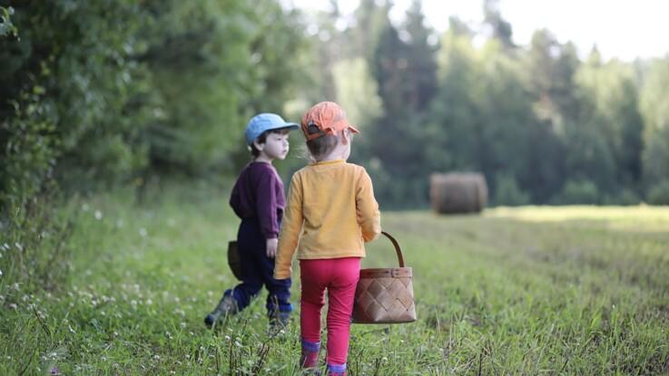 Maladie de Lyme : comment protéger ses enfants des tiques ?