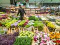 Visite insolite au marché de Rungis