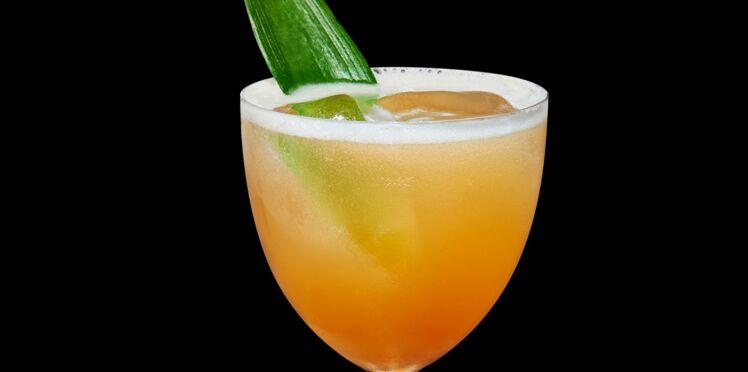 Cocktail Shoreline Fizz