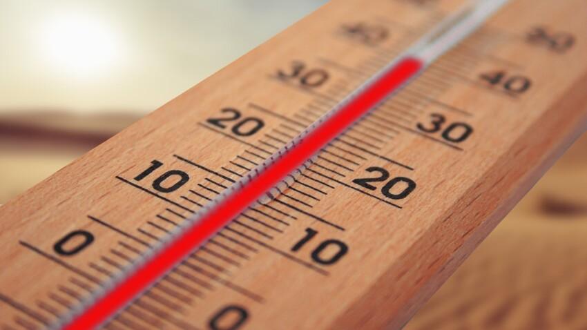 Canicule : à quelles températures faut-il s'attendre cette semaine ?