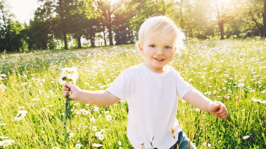 Allergie aux pollens de graminées: quels sont les différents traitements?