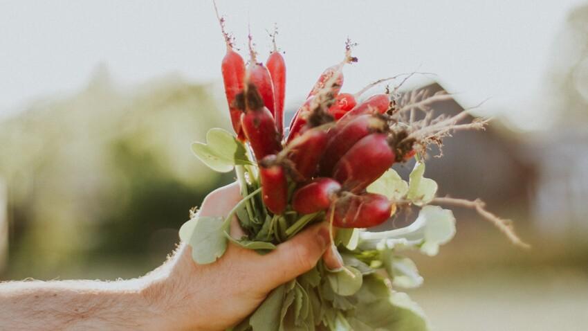 Vrai/Faux : 6 idées reçues sur l'alimentation bio