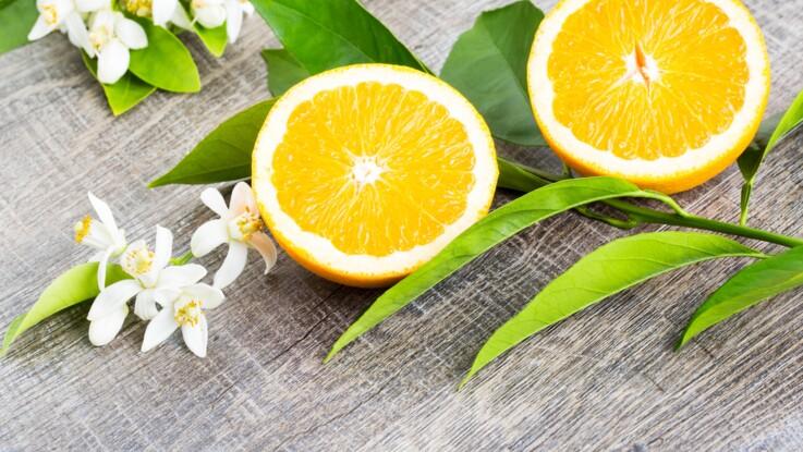 Toutes nos recettes à cuisiner avec de la fleur d'oranger