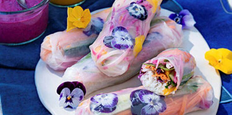 Rouleaux d'été aux légumes colorés