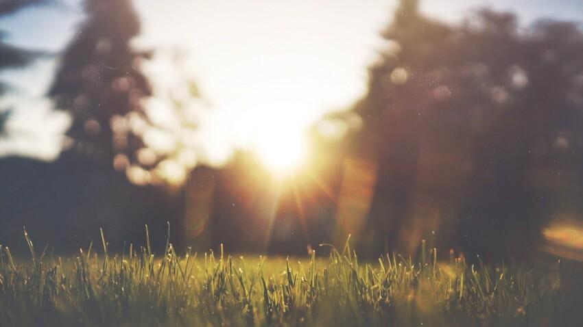 Rayons du soleil UVA et UVB : quel est leur impact sur notre peau ?
