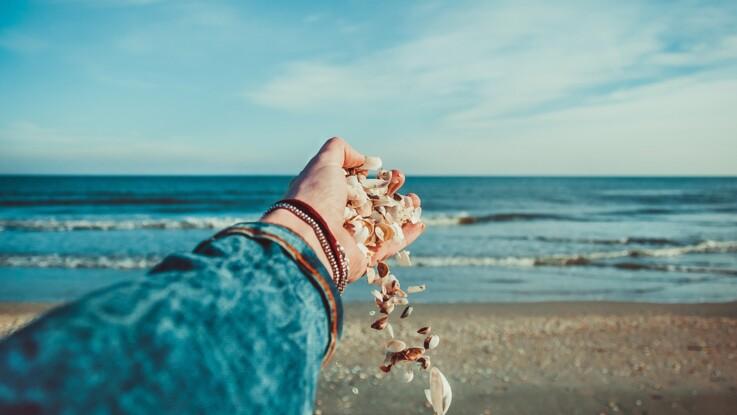 Coquillages, sable, bois flotté... Qu'a-t-on le droit de ramasser sur la plage ?