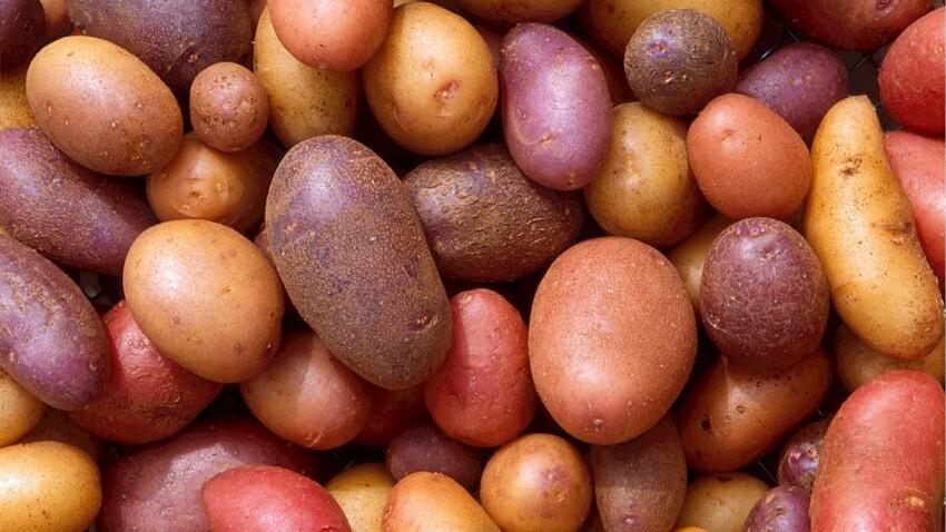 Peut-on congeler des pommes de terre ?