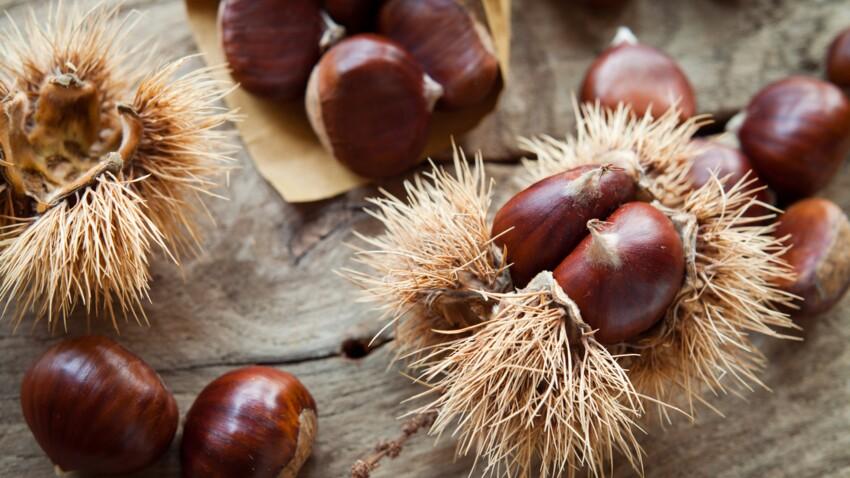 Marrons et châtaignes : comment les différencier pour éviter les intoxications