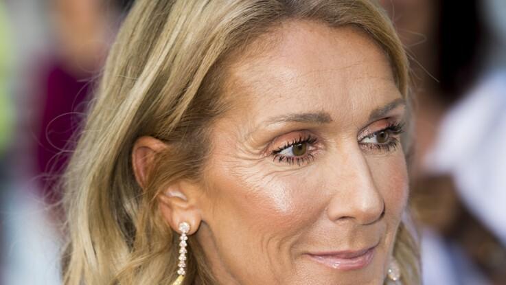 """Céline Dion aux Vieilles Charrues : """"C'est le plus gros cachet de l'histoire"""""""