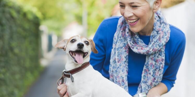 La SPA simplifie l'adoption d'animaux pour les seniors