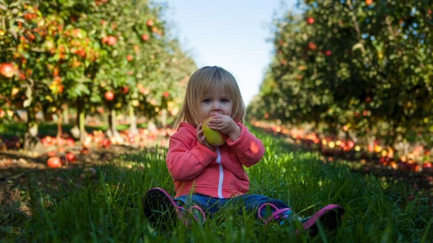 Carences en fer, calcium, vitamines : mon enfant peut-il être vegan ?
