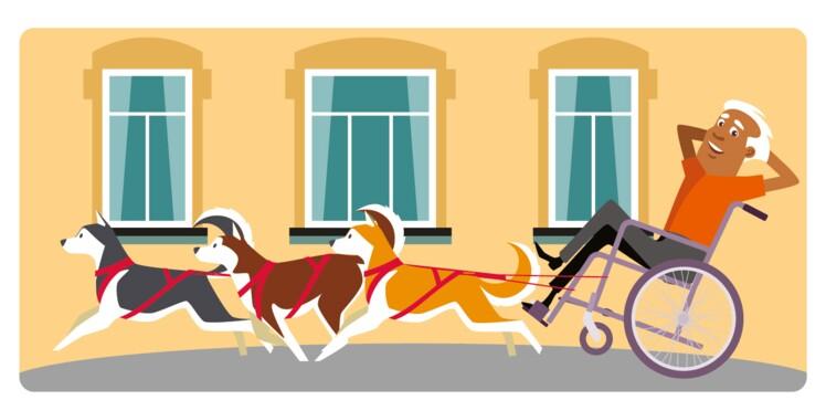 Entrer en maison de retraite avec son chien, c'est possible ?