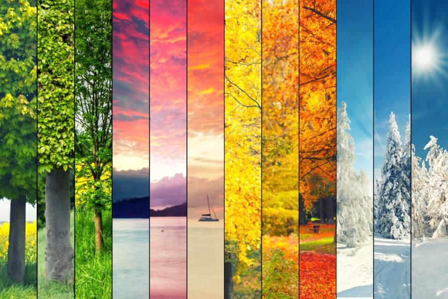 Tarot des Saisons : signification des cartes et tirages de l'oracle de Marc Angel