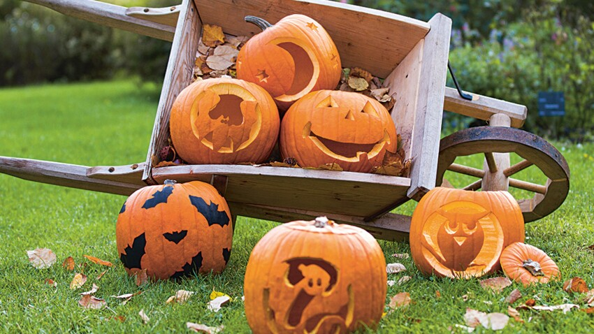 Décoration d'Halloween : nos patrons à imprimer pour creuser votre citrouille