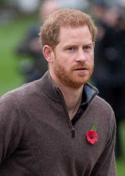 Le prince Harry ressemble à...