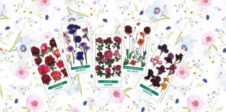 Tarot des fleurs : la signification des 25 cartes