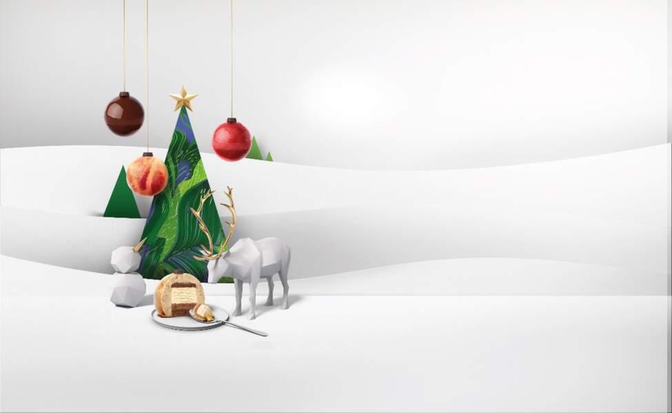 Bûche de Noël 2019 : Häagen Dazs