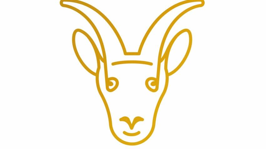 Horoscope travail et argent du Capricorne 2020 par Marc Angel
