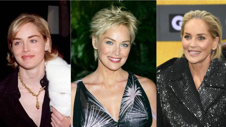 Sharon Stone : son évolution physique en images
