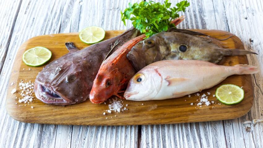 Repas de fête pas cher : les astuces d'un pro pour trouver du poisson à petits prix