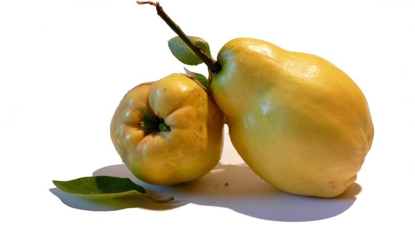Toutes nos recettes gourmandes de compote de pomme-coing