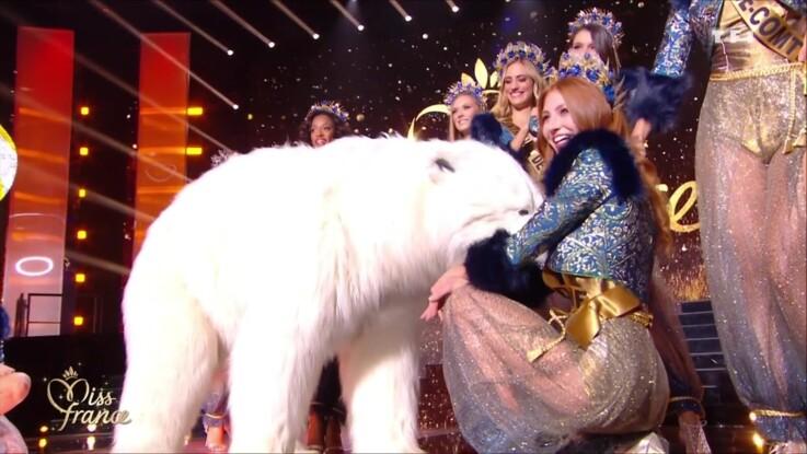 Miss France 2020 : cet ours blanc qui provoque l'hilarité des internautes