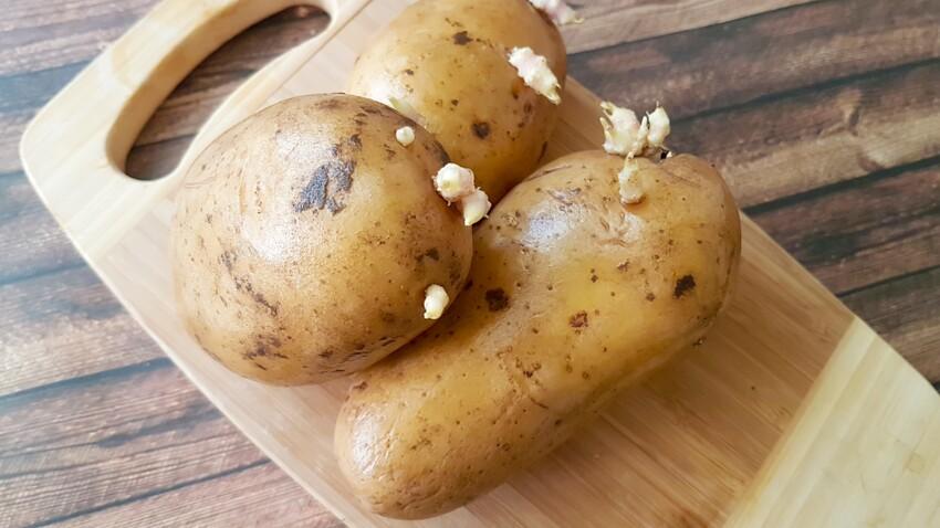 Comment empêcher les pommes de terre de germer ?