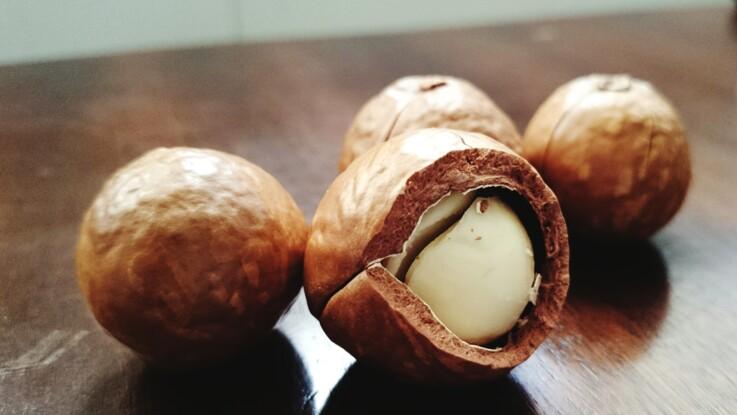 Huile de macadamia : ses bienfaits et utilisations en beauté