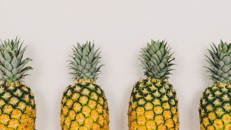 Tout savoir sur l'ananas