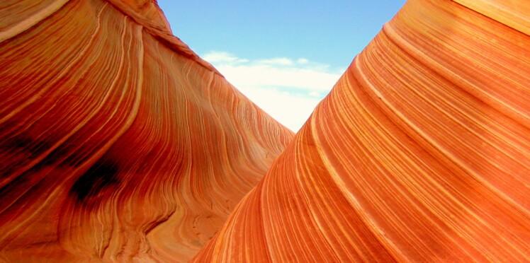 Connaissez-vous ces œuvres d'art naturelles ?