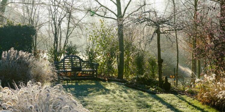 Jardin : comment le protéger du froid