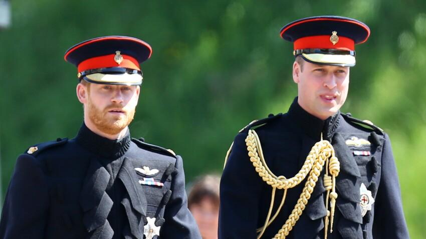 """Cet avertissement du Prince William qui a """"irrité"""" son frère, Harry"""