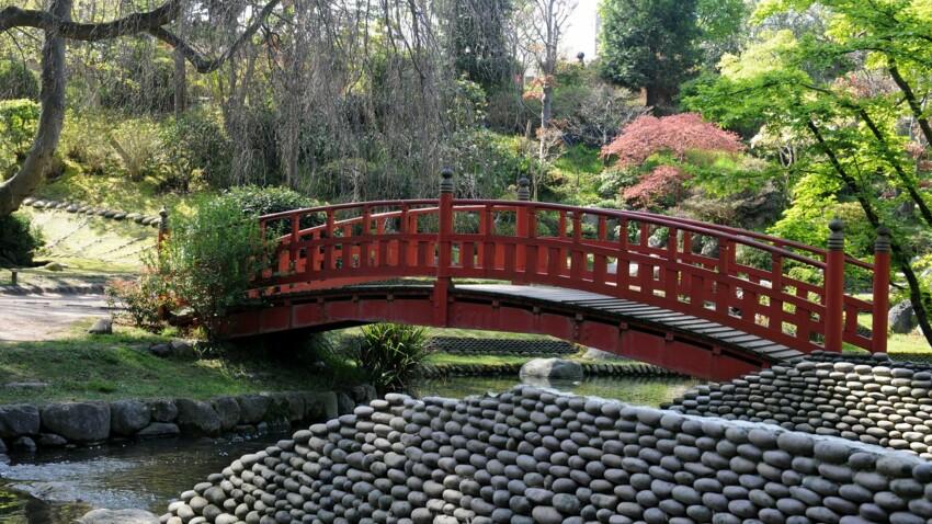Visite : découvrez le jardin d'Albert Kahn à Boulogne-Billancourt